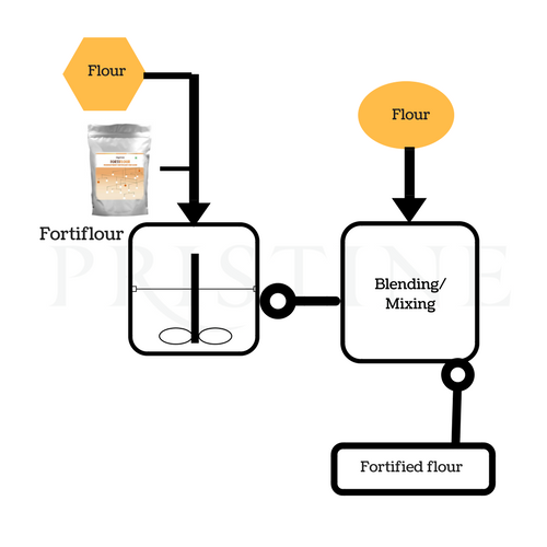 Flour Fortification Process