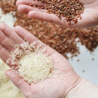 Fortification of Rice